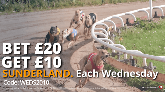 The only pool betting site for greyhound racing, 24hrs a day.